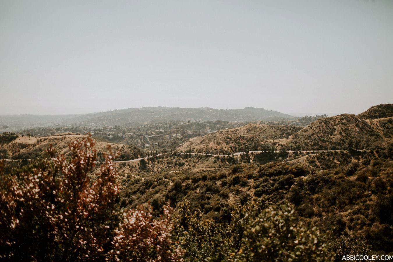 ABBI COOLEY CALIFORNIA WEDDING PHOTOGRAPHER_1324