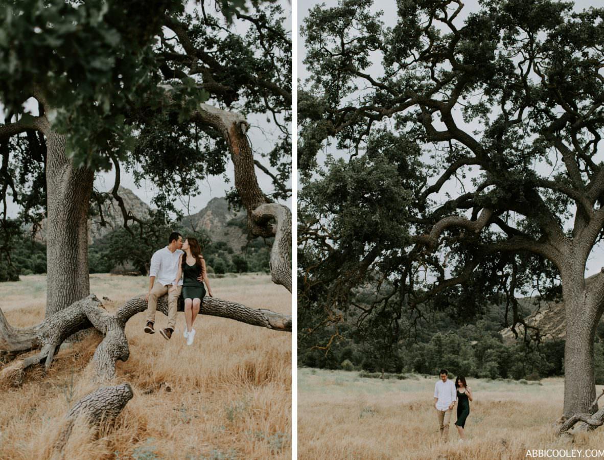 ABBI COOLEY CALIFORNIA PHOTOGRAPHER_1190
