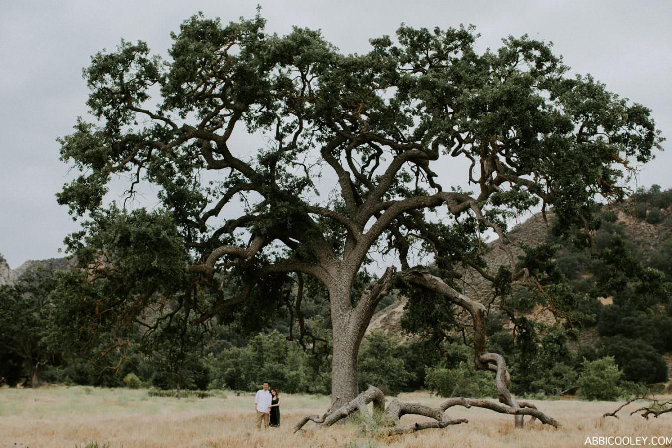 ABBI COOLEY CALIFORNIA PHOTOGRAPHER_1191